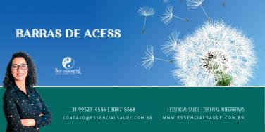 Curso de Barras de Access
